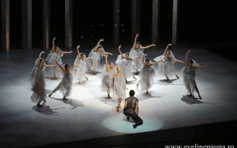 LA BAYADÈRE, NATION OF ILLUSION – NOISM – ÎNTÂLNIRILE JTI